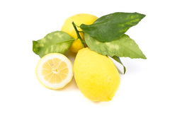 Biological lemon Stock Photography