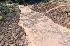Biological soil Royalty Free Stock Photo