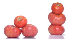 Biological tomatoes Stock Image