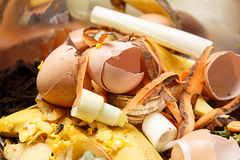 Biological waste, rotten food, leftovers Royalty Free Stock Photos