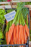 Biologically Clean Carrots stock images