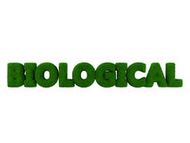 Biologiczny trawy słowo Obraz Stock