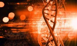 Biologie, wetenschap en medisch technologieconcept royalty-vrije stock fotografie