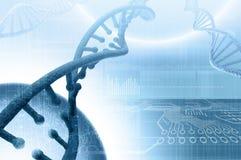 Biologie, wetenschap en medisch technologieconcept royalty-vrije stock afbeelding