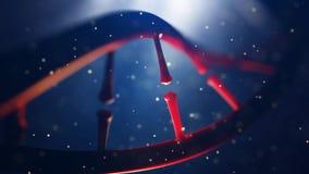 Biologie, wetenschap en medisch technologieconcept Close-up van concepten menselijk genoom Stock Foto's