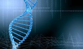 Biologie, Wissenschaft und medizinisches Technologiekonzept Stockfotografie