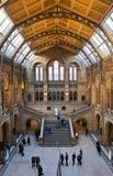 Biologiemuseum in Londen Stock Afbeelding