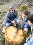 Biologiprofessor med studenter som analyserar trädstammen genom att använda minnestavlan arkivbilder