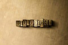 BIOLOGIQUE - le plan rapproché du vintage sale a composé le mot sur le contexte en métal Images libres de droits