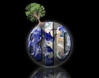 Biologische aarde Royalty-vrije Stock Foto
