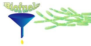 Biologische Brennstoffe vektor abbildung