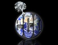 Biologische Erde Stockfotos
