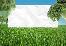 Biologische Nahrung Lizenzfreies Stockfoto