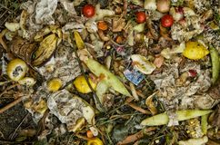 Biologischer Abfall lizenzfreie stockfotografie