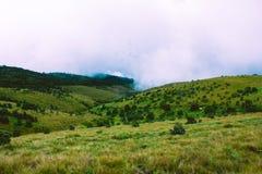 Biologisk mångfald av Horton Plains National Park, Sri Lanka fotografering för bildbyråer