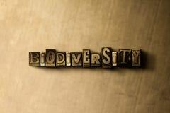 BIOLOGISK MÅNGFALD - närbild av det typsatta ordet för grungy tappning på metallbakgrunden stock illustrationer