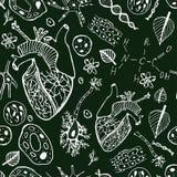 Biologisk vektorbakgrund Royaltyfri Foto