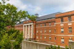 Biologiska vetenskaper som bygger på Duke University Arkivfoton