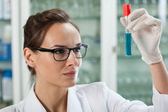 Biologist analyzing test tube with chemical liquid Stock Photography
