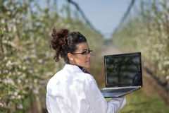 Biologist in blossoming orchard Stock Photos