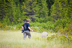 Biologist exploring a bog. In Cindrel Mountains in Romania Stock Photos