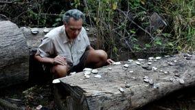 Biologist examine Fungus