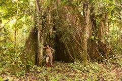 Biologist Next To A Kapok Tree Royalty Free Stock Photo