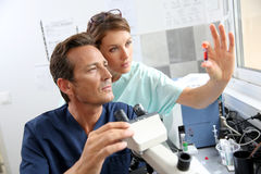 Biologists checking samples in laboratory Royalty Free Stock Image