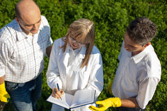 Biologists taking notes Royalty Free Stock Photography