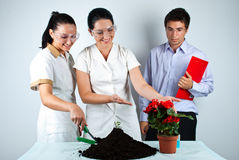 Biologists team in laboratory. Three biologists working in laboratory ,they smiling and one of women showing to a  plant in patchwork,check also my collection Stock Image