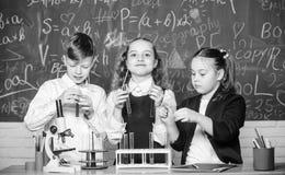 Biologiutrustning studenter som g?r biologiexperiment med mikroskopet i labb Sm? ungar som in l?r kemi royaltyfri fotografi