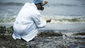 Biologo che preleva campione della caduta di olio su grande acqua, prova tossica, ecosistema nocivo fotografia stock