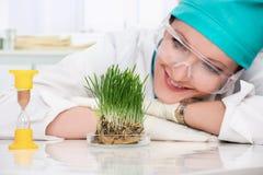 Biologo della donna Fotografie Stock