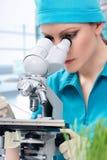 Biologo della donna che lavora con il microscopio Fotografia Stock