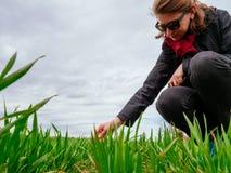 Biologo della donna di agricoltura che ispeziona la composizione nel suolo Fotografia Stock Libera da Diritti