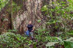 Biologo Woman Standing Next ad un albero di capoc fotografie stock libere da diritti