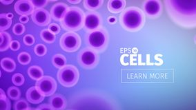 Biology background. Abstract vector cells illustration. Microscope view. Horizontal banner Stock Images