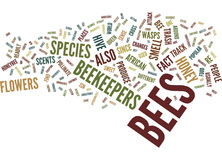 The Biology Of Bees Text Background  Word Cloud Concept Royalty Free Stock Image