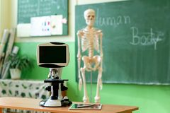 Biology classroom. Artificial human body skeleton, student desk with microskope and digital tablet. Anatomy teaching aid. stock photography