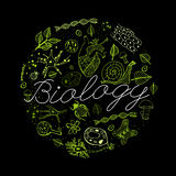 Biology Concept 03 A Royalty Free Stock Image