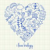 Biology drawings in heart shape. Illustration of biology doodles in heart shape Stock Photos