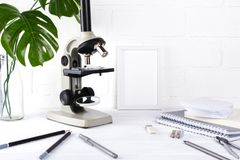 Biology education concept - Assortment of supplies, microscope .Minimalistic school or office workspace Royalty Free Stock Images