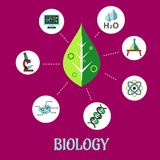 Biology flat concept design Royalty Free Stock Image