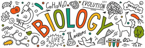 Free Biology. Hand Drawn Doodles With Lettering. Royalty Free Stock Photo - 135246155