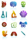 Biology Icon Set. Set of 12 Biology Icons Stock Photography