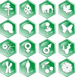 Biology icons. Group of 16 icons representing biological features Stock Photo