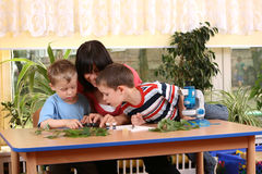 Biology lesson. In preschool - teacher and two boys stock photo