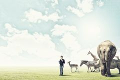 At biology lesson. Boy of school age outdoor with wild animals Royalty Free Stock Photography