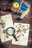 Biology lesson and  cataloging plant Stock Image