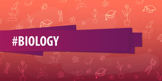 Biology subject. Back to School background. Education banner. Stock Images